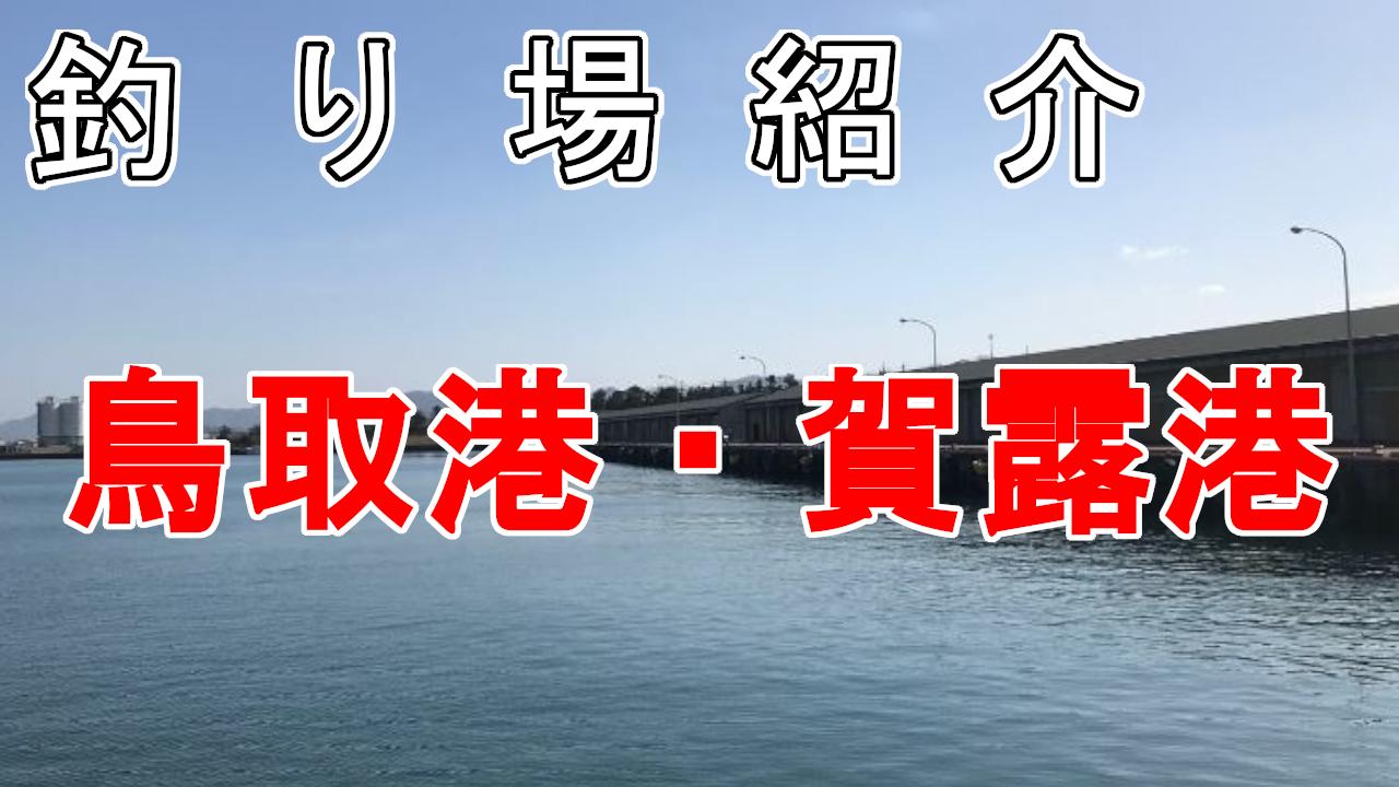 釣り場紹介鳥取港