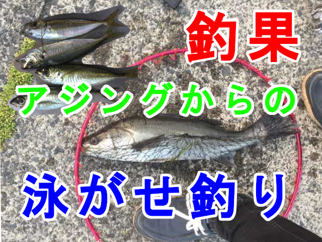 鳥取アジング20190620釣果アイキャッチ