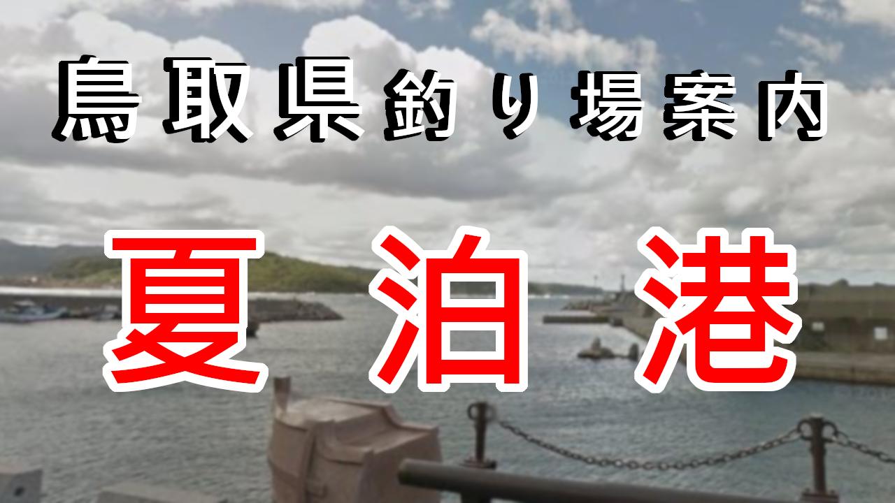 鳥取県釣り場案内夏泊港