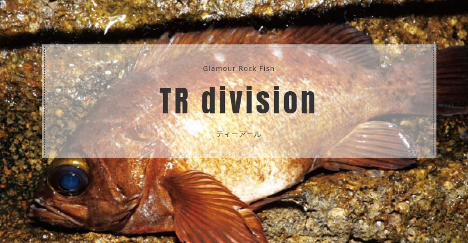 trvision