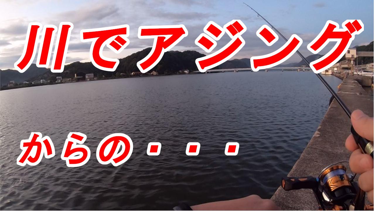 円山川アジング