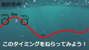 エギング潮見表一例