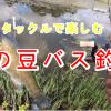 秋の豆バス釣り